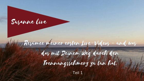 Resümee Live-Videos