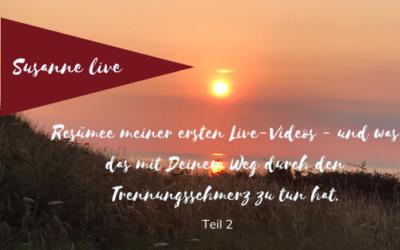 Resümee meiner ersten Live-Videos Teil 2
