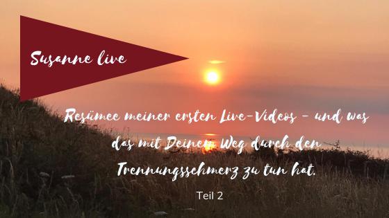 Resümee Meiner Ersten Live Videos Teil 2 Susanne Schwarz