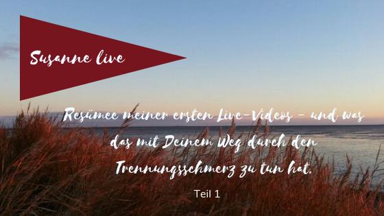 Resümee Meiner Ersten Live Videos Susanne Schwarz